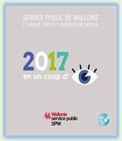 Logo rapport DGO6 2017